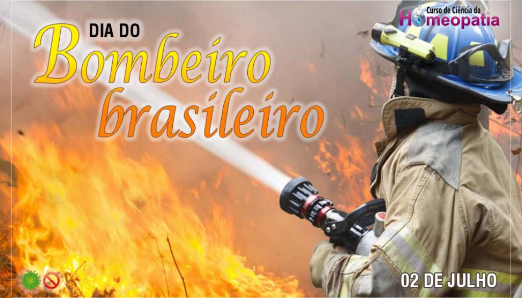 SITE_DIA_DO_BOMBEIRO_BRASILEIRO_CH