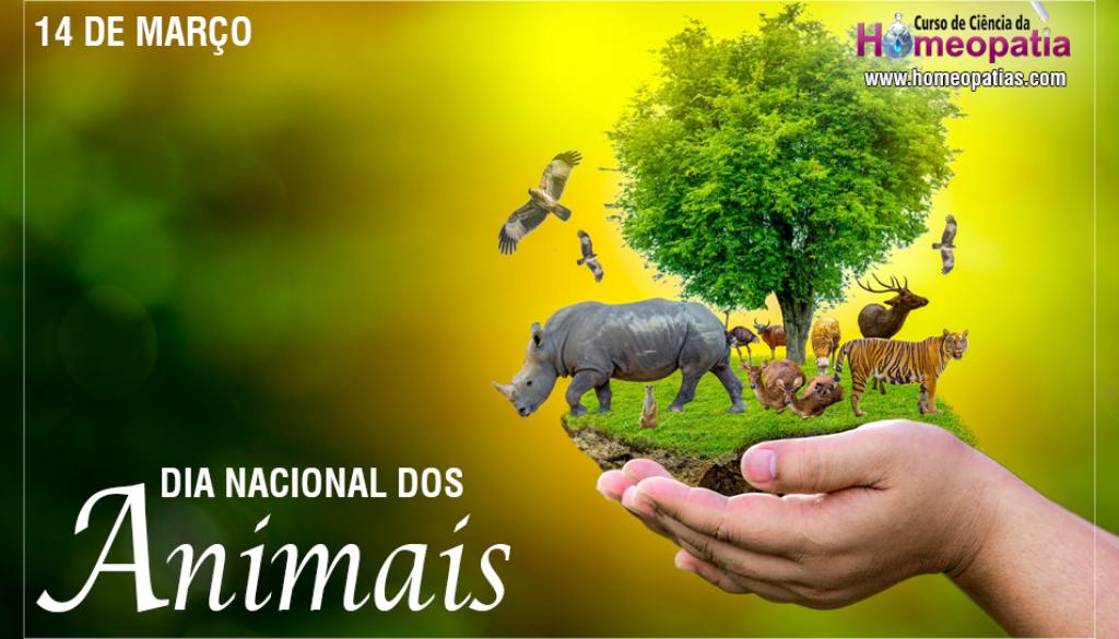 SITE_DIA_NACIONAL_DOS_ANIMAIS_IBH