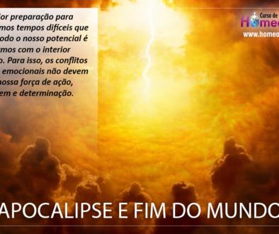 APOCALIPSE_E_FIM_DO_MUNDO_IBH
